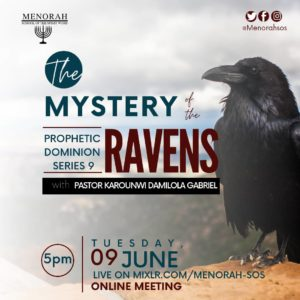 Read more about the article The Mystery of the Ravens