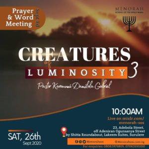 Read more about the article Creatures Of Luminosity (Part Three)