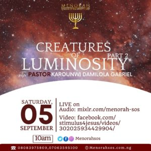 Read more about the article Creatures Of Luminosity (Part Two)