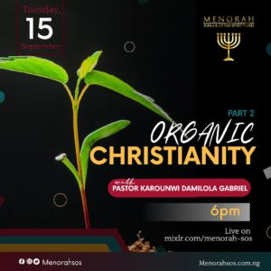 Read more about the article Organic Christianity (Part Two)