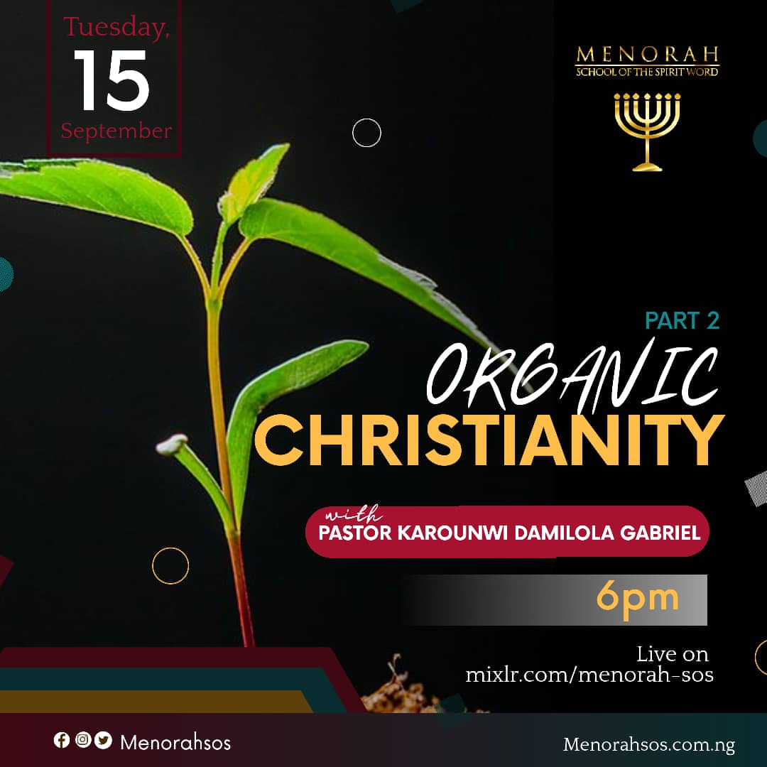 You are currently viewing Organic Christianity (Part Two)