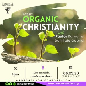 Read more about the article Organic Christianity