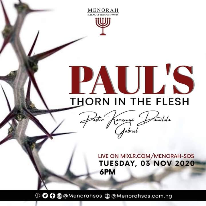 You are currently viewing Paul's Thorn In The Flesh